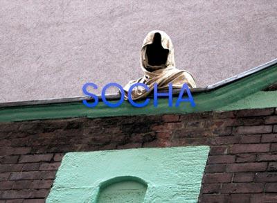 AMH-socha