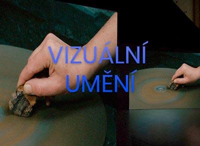 AMH-visual